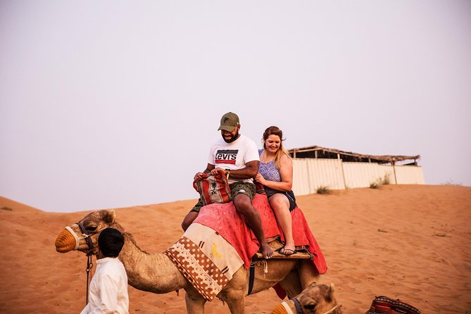 Ras Al Khaimah Camel Trekking & Dinner With Hotel Pick Up photo 4