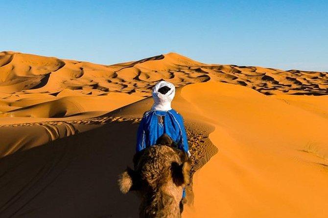 desert experience in 3 days