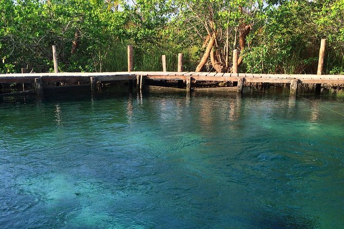 Tour Holbox - Two Island and One Cenote