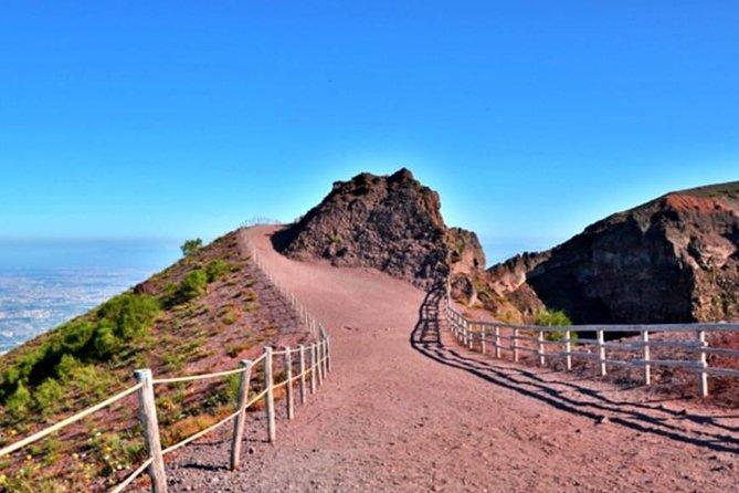 Excursion to the Vesuvius National Park