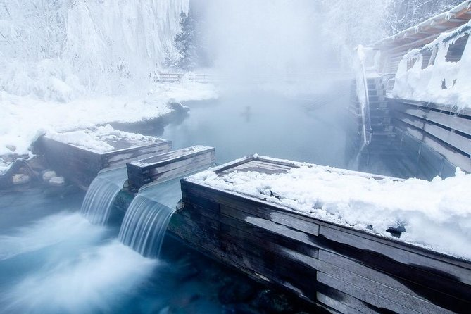 Liard River Hotsprings Excursion