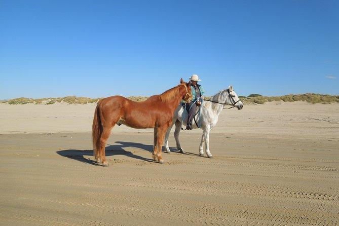 Private Horseback Ride on The Beach & Alcatraz Tour in San Francisco