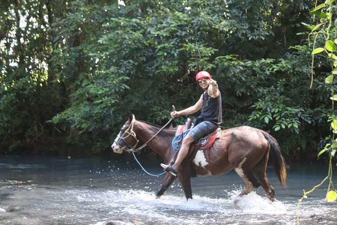 Horseback riding photo 7