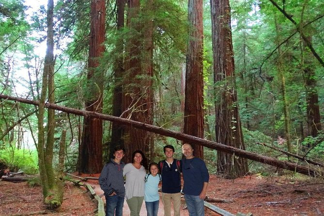 Experience our Muir Woods and Wine Country Combo Tour