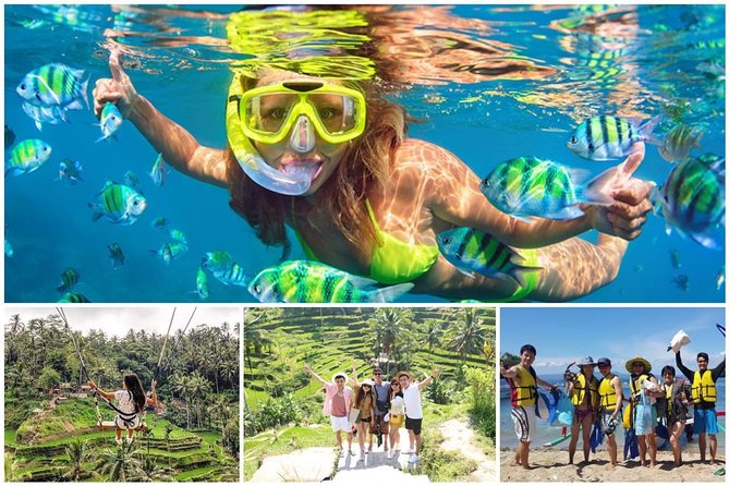 Blue Lagoon Snorkeling - Lunch - Jungle Swing - Rice Terrace with All inclusive