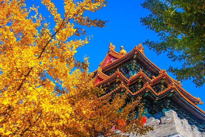 Quality Small Group Beijing Layover Tour to Forbidden City photo 7