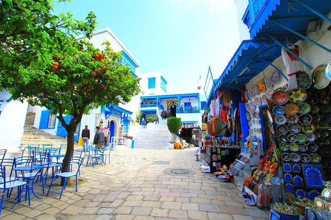 Tunis: One Day Private Tour (Sidi Bou Said + Bardo Museum + Carthage + Medina)