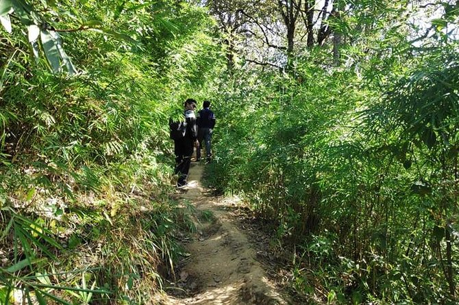 Phulchowki Hiking