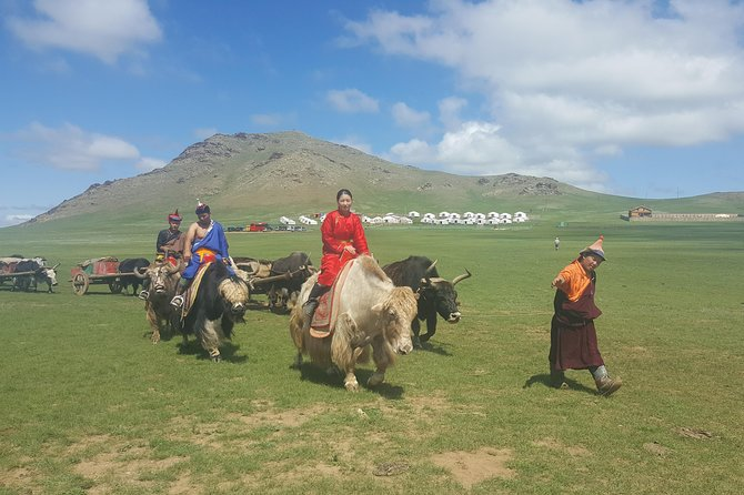 A Day Genuine Nomadic Heritage
