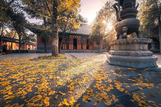 All-inclusive Customized Luoyang Layover Tour