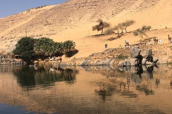 4-Day 3-Night Luxury Nile Cruise every Friday from Aswan to Luxor photo 16