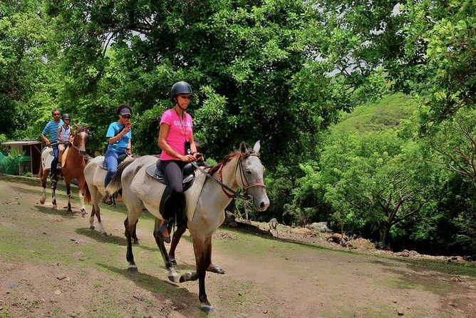 East Coast Riding Stable: Horseback Riding Excursion St. Lucia photo 24