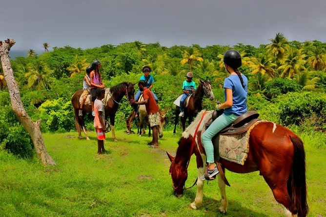 East Coast Riding Stable: Horseback Riding Excursion St. Lucia photo 9