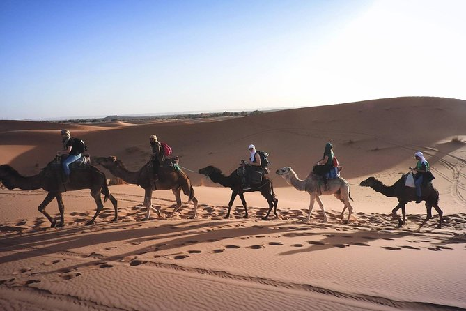 Safari Tour in Morocco : 3 Days From Marrakech to Desert and Chefchaouen photo 7