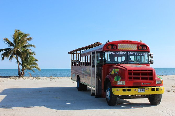Harvest Caye Party Bus Extravaganza with Beach ( Private Charter )