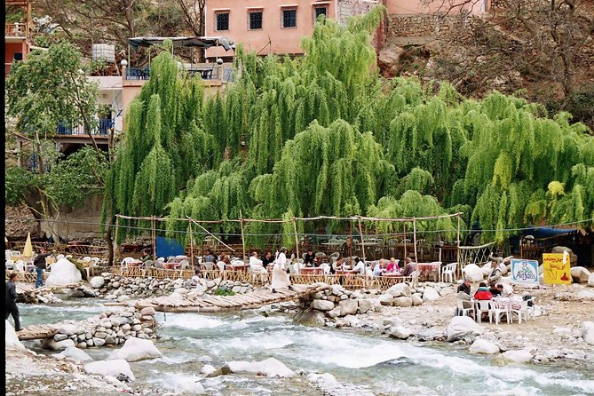 Excursion in the Ourika valley