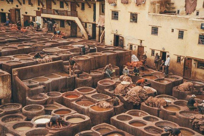 Half day Excursion in Fes medina