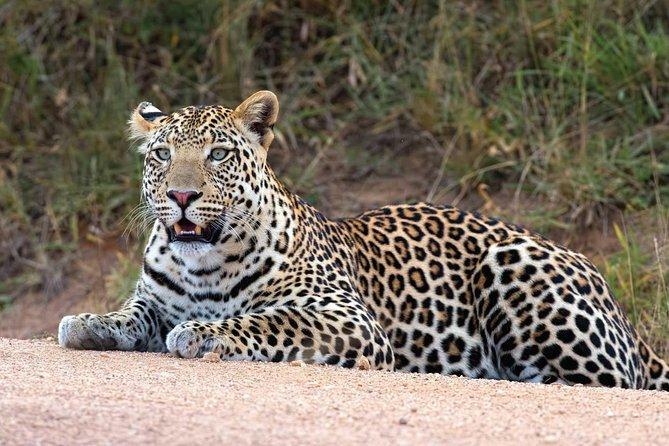 20 Days Combined East African Adventure Safari