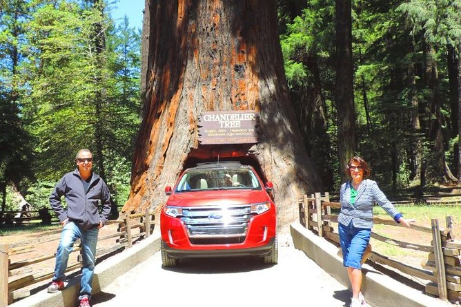 Redwood National Park Tour 2-Day Private Tour Package Hotel Included