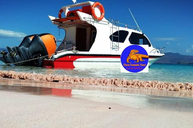 1Day Komodo Trip by using Fast Boat Private.