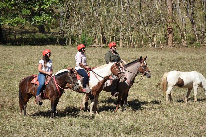 Horseback riding Tarcóles