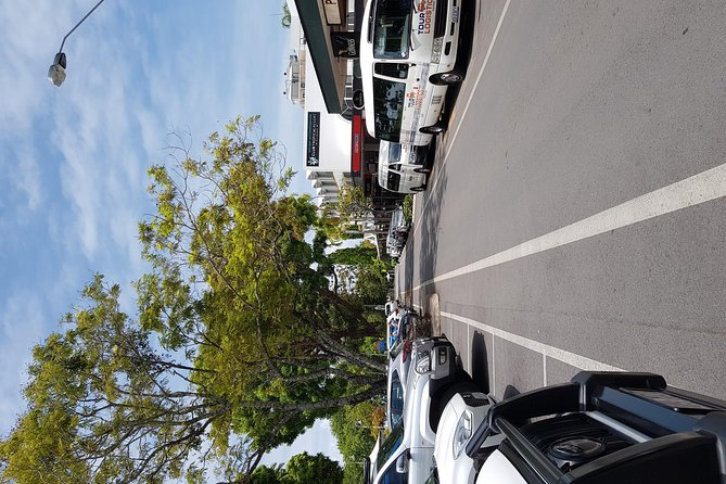 Port Douglas Sunday Markets Day Tour