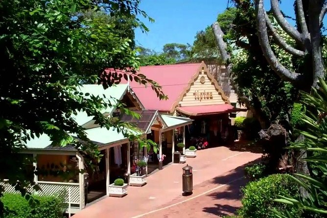 Montville Maleny Wine and Scenic Tour