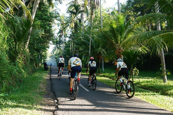 Balitri cycling camp