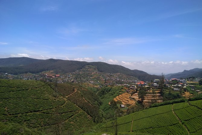Tea Factories & Water Falls