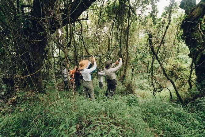3-Days Chitwan National Park Tour from Kathmandu by private vehicle