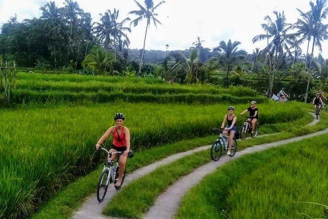 Ubud Cycling Tour - Kuta/Seminyak/Legian area