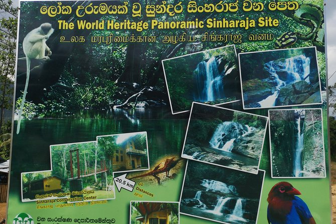 Galle Sinharaja Rain Forest by motorcycle