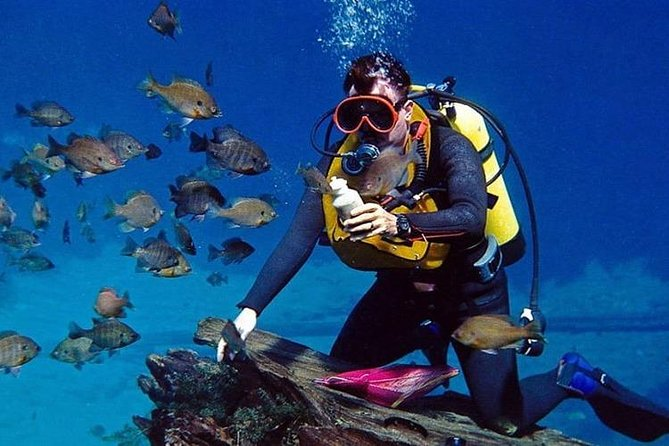 Scuba diving + Water sports ( 5 activities ) Combo package