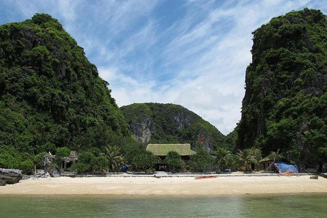 Oasis Bay Party Cruise 5 Star - Ha Long Bay 2 Days 1 Night (For Young People) photo 17