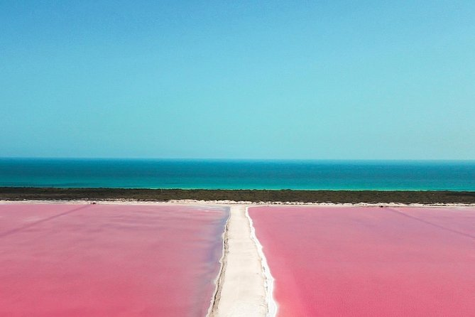 Tour Las Coloradas Wonderful Pink Lake - Transportation Included