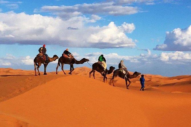Overnight Camp Camel Trekking In Merzouga