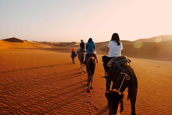 Fes To Marrakech Via Merzouga Desert and Camel Trekking tour 2 Days