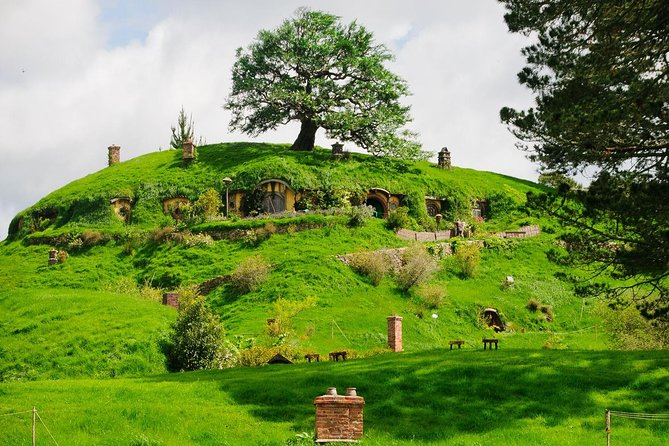 Hobbiton movie set - Private tour