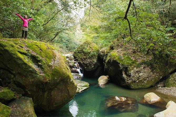 Miyazaki Valley Waterfall Hike