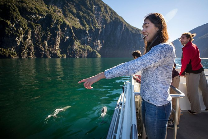 Milford Sound Cruise Including Underwater Observatory and Lunch
