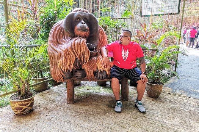 Ipoh And Bukit Merah Orang Utan Island Tour