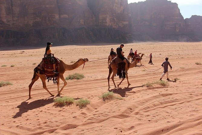 Full Day Private tour at Wadi Rum with Dinner