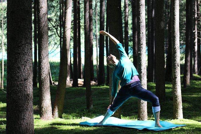 Yoga individual lessons