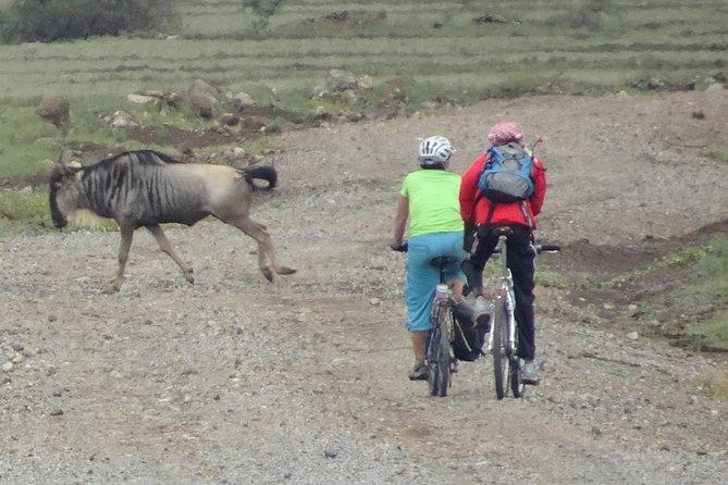 Motorcycle Tour Kilimanjaro to Great Rift Valley