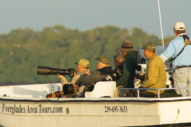 Two-Hour Everglades National Park Dolphin, Birding and Wildlife Boat Tour