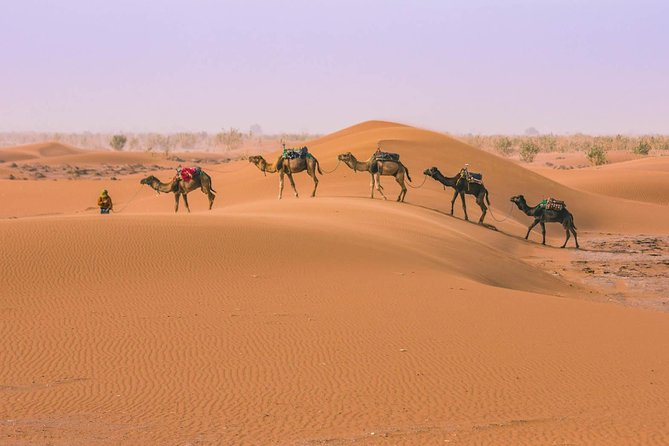 Morocco Private Desert Tour from Marrakech 4 Days