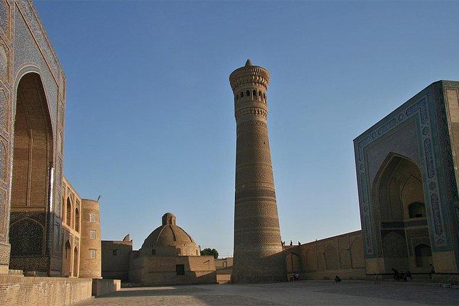 Bukhara day tour