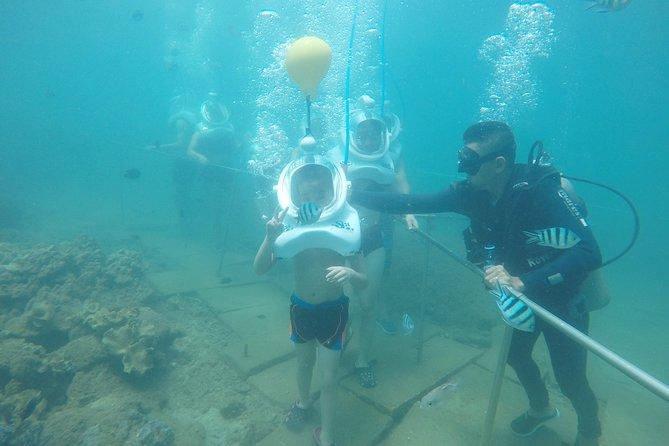 Cham Island Sea Trek and Snorkeling by Speedboat