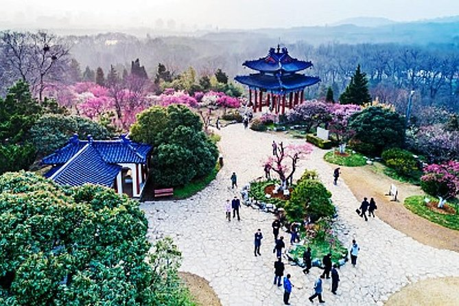Private In-Depth Day Tour of Nanjing Purple Mountain with Lunch