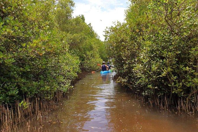Kayak Journey Rekawa